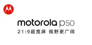 hp Motorola p50